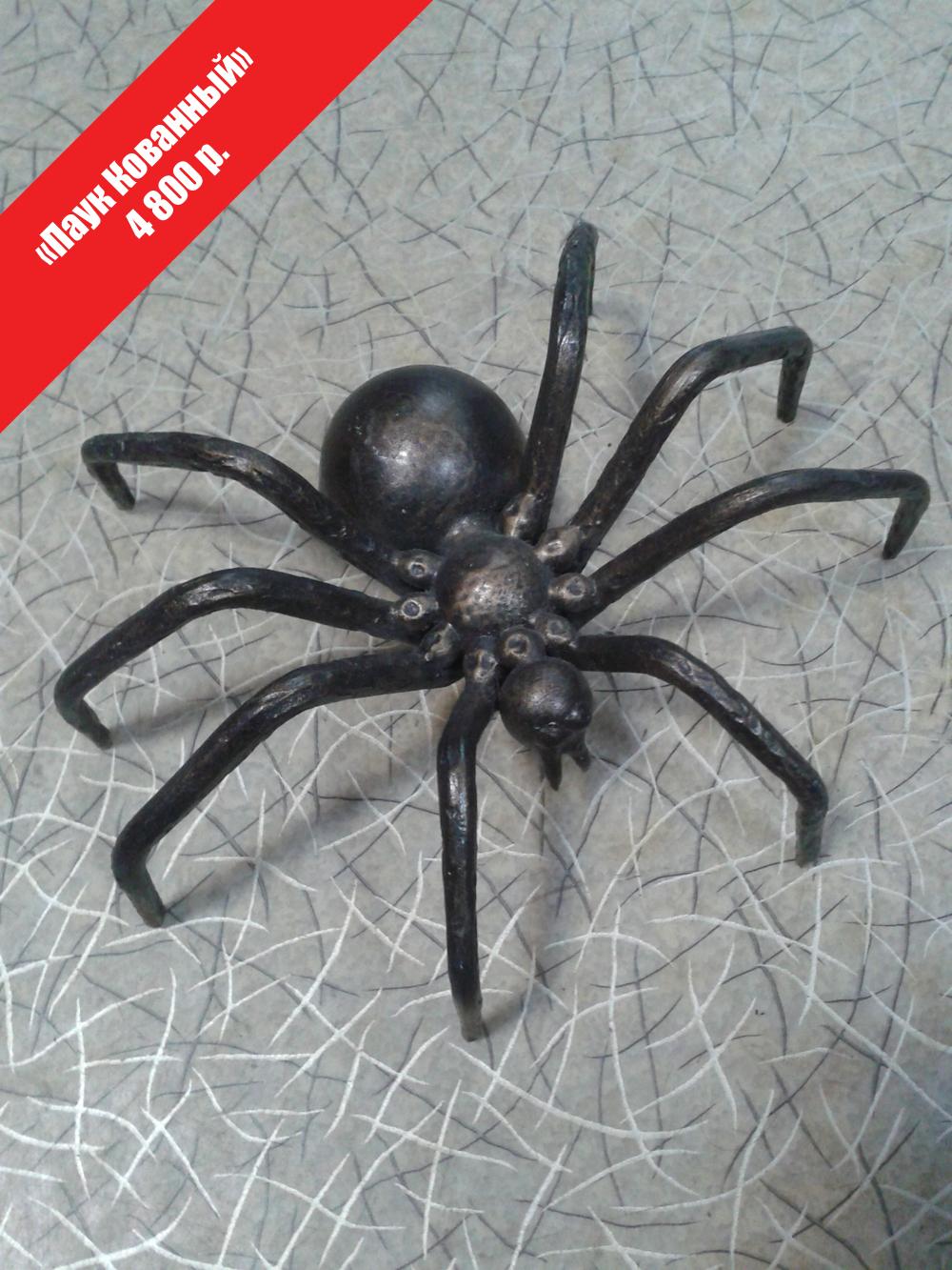 Красивый паук своими руками